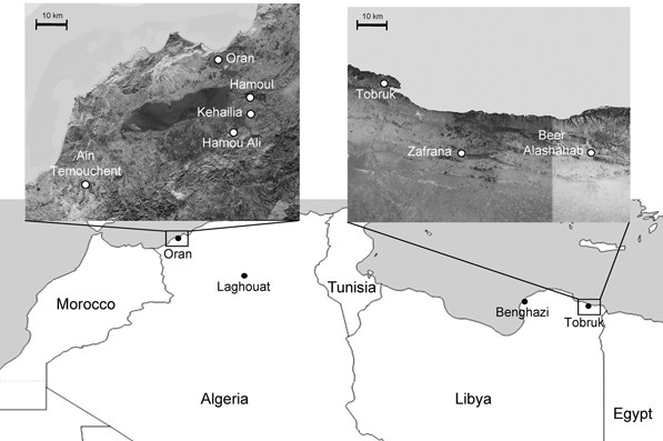 Landscape around Oran, Algeria,  and Tobruk, Lybia in 2009 that produced plague cases. (Cabanel et al, 2013)