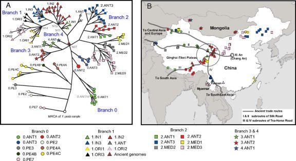 Click to enlarge, (Cui et al, PNAS, 2013)