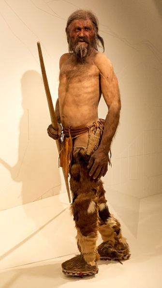 A reconstruction of Oetzi the iceman. (Thilo Parg / Wikimedia Commons; License: CC BY-SA 3.0)