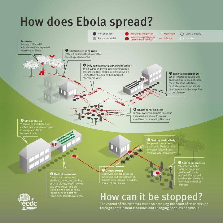 d3460a47c68d52dc398675e5dbb3595c--spreads-infographic.jpg