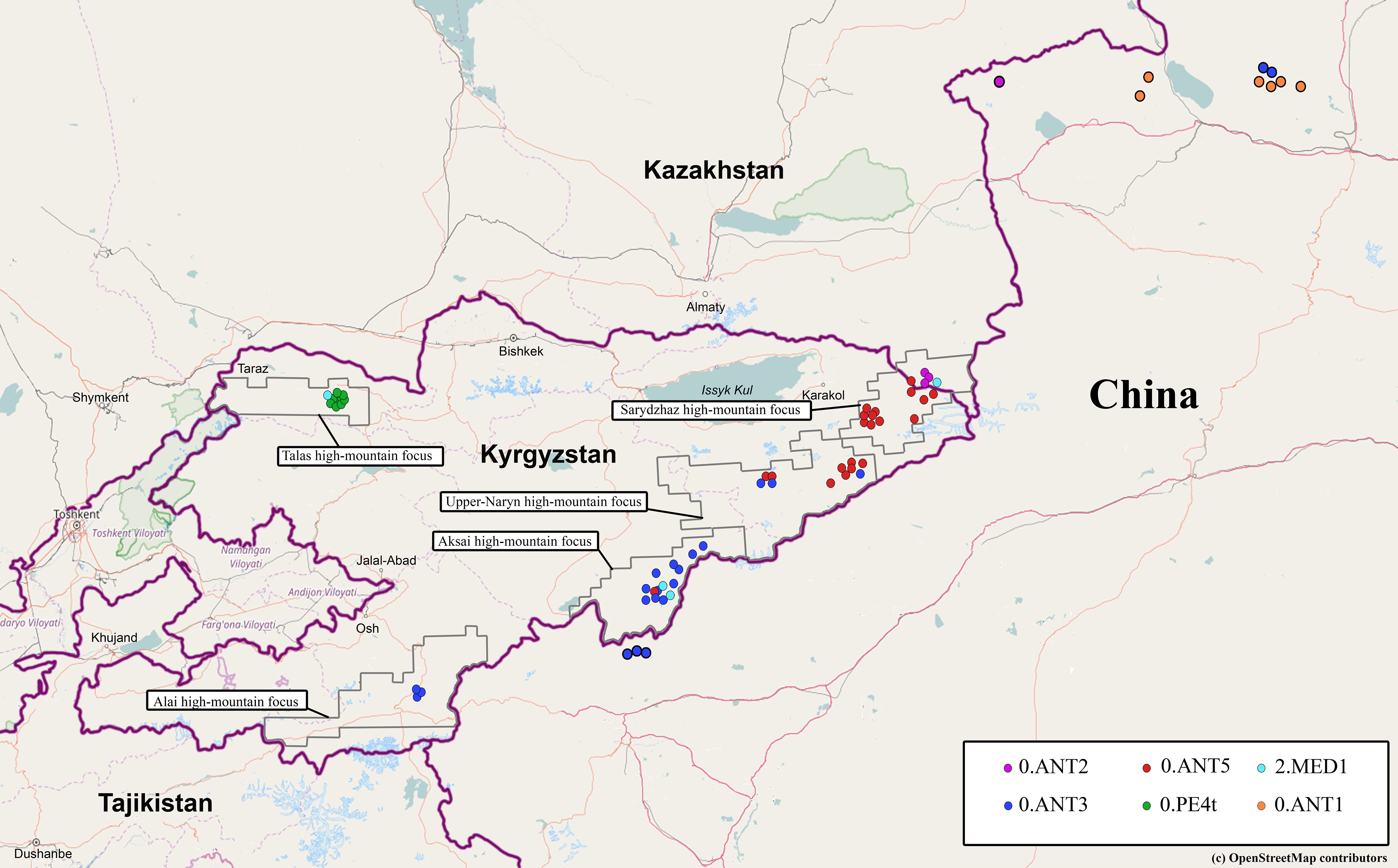 ancient plague strains in kyrgyzstan